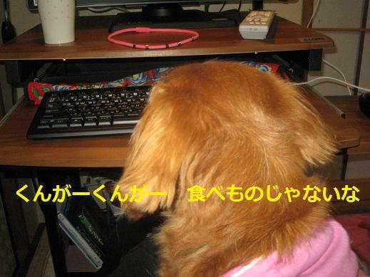 c0206342_2153124.jpg