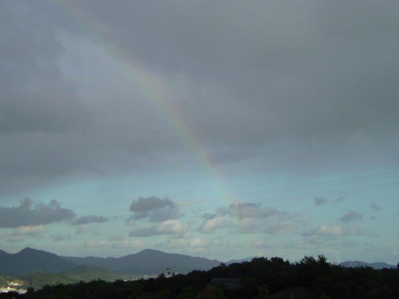 Perfect rainbow. _e0033459_2111057.jpg