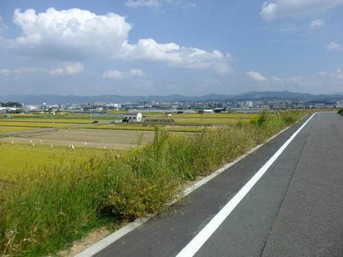 休日ライド 池田~大山崎~流れ橋 サイクリングコースのご紹介_d0174462_314448.jpg