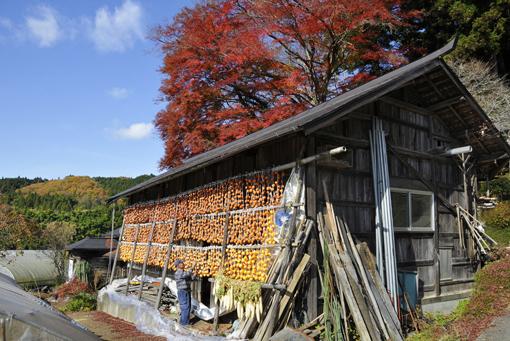 淡交社「なごみ」11月号 美しい日本の、心の日溜まり_f0143469_1133322.jpg