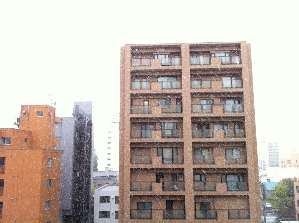 Snow snow_e0014773_1093877.jpg