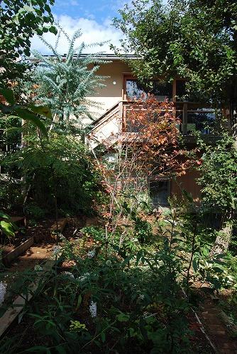 10月の庭…_c0124100_0192367.jpg