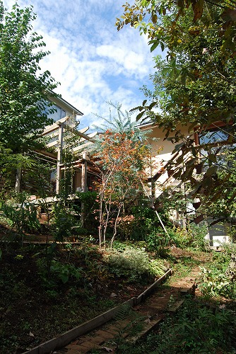 10月の庭…_c0124100_020549.jpg