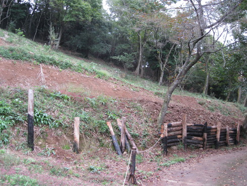 Green Green Village 日田にて、_a0125419_13524117.jpg