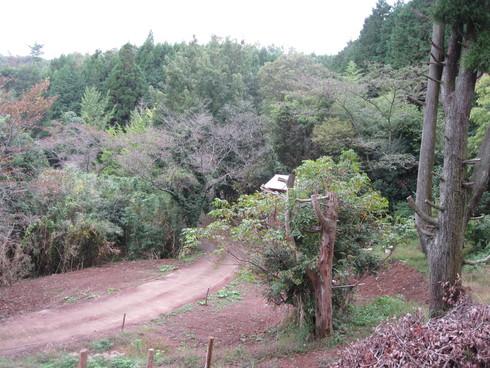 Green Green Village 日田にて、_a0125419_1356485.jpg