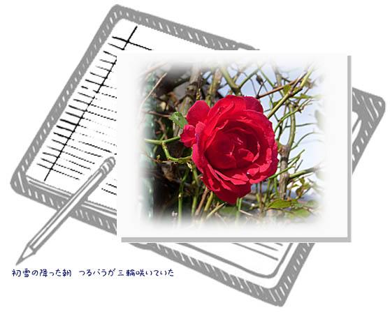 f0227323_8503675.jpg