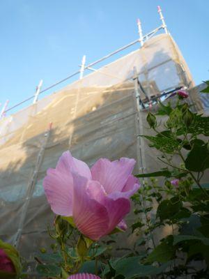 花の似合う古民家再生住宅_c0004024_1122224.jpg
