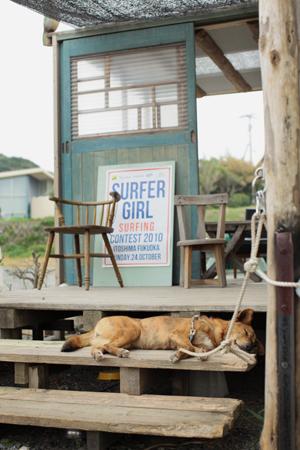 糸島巡り_a0097735_1425920.jpg