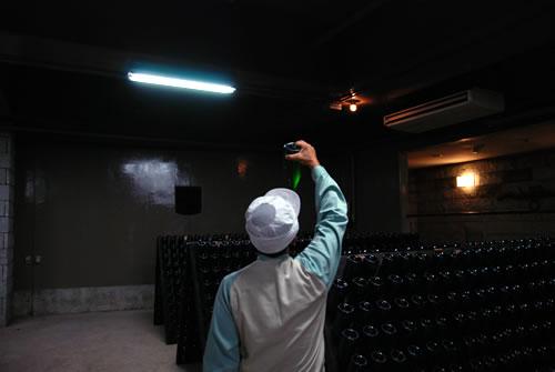 九州ワイナリー巡り ~大分・安心院葡萄酒工房_b0206537_1815124.jpg