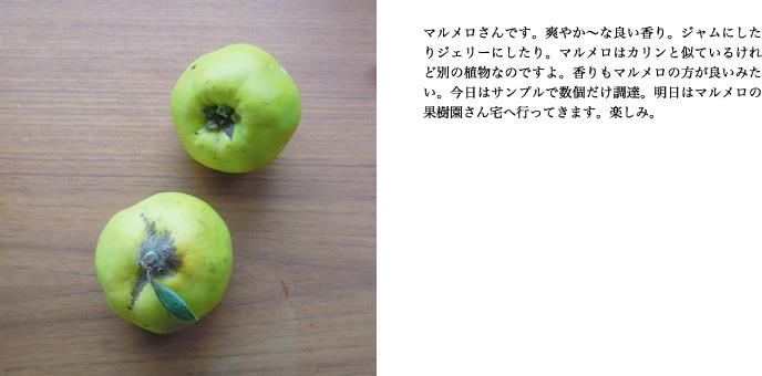 f0220343_15433333.jpg