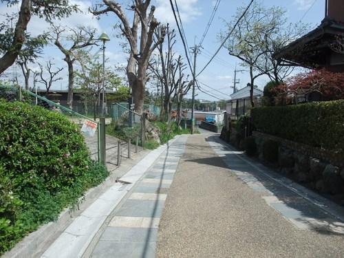 歴史街道サイクリング~大山崎往復60km~_d0174462_054399.jpg