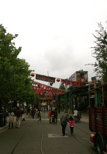 東京ディズニーシー植物散歩(ちょっとだけ①)_f0160063_9242975.jpg