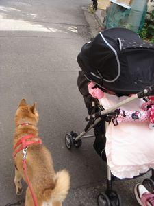 お散歩_e0012580_9321880.jpg