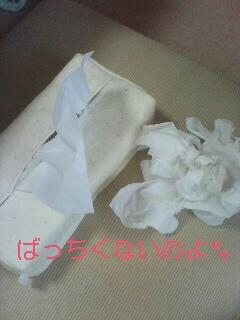 f0210546_2140818.jpg