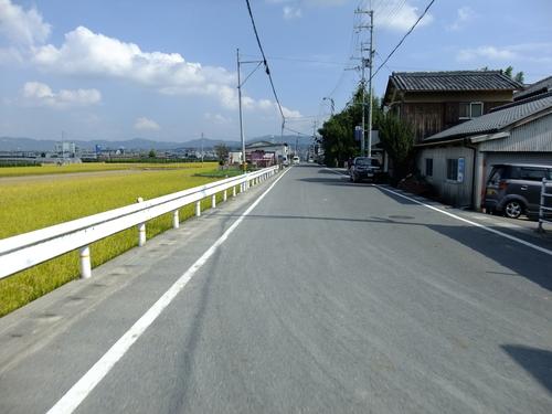 休日ライド 池田~大山崎~流れ橋 サイクリングコースのご紹介_d0174462_2342219.jpg