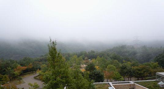 秋色いくつか ・・・_b0102572_14125652.jpg