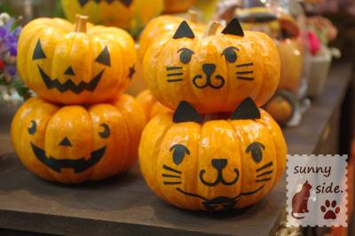 ハロウィンかぼちゃ_c0225088_1612162.jpg