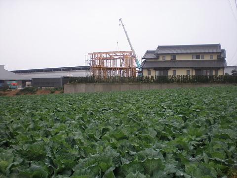 東細谷町の家 上棟_e0145995_20234374.jpg