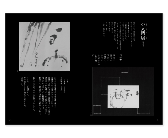 季刊誌Sai vol.05発行_f0120395_16472895.jpg