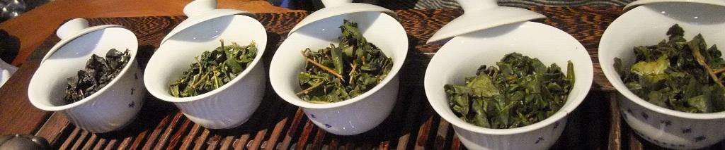 台湾茶の予習2_b0151300_16171542.jpg