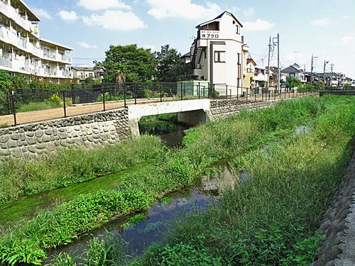 落合川を辿る(3)緑溢れる中流域_c0163001_1835368.jpg