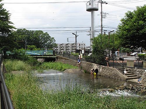 落合川を辿る(3)緑溢れる中流域_c0163001_18371249.jpg