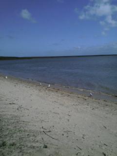 海沿い_b0157416_16412868.jpg