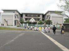 福井市の勢和中学校1年生の子供達が農業体験にやってきました_e0061225_11321293.jpg