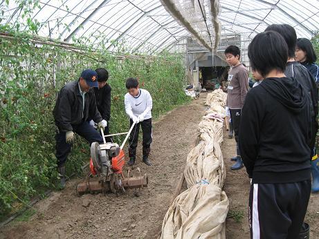 福井市成和中学校1年生の今立班_e0061225_1911641.jpg