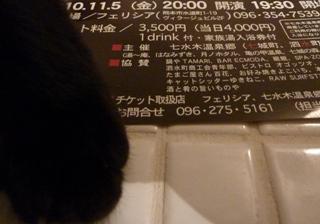 あったかまくら猫 のぇるろった編。_a0143140_23202324.jpg