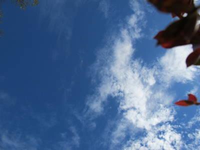 台風前の雲の様子_a0129867_18344261.jpg