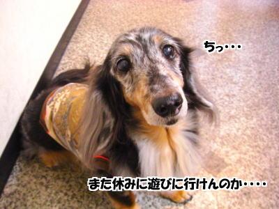 d0020869_14564885.jpg