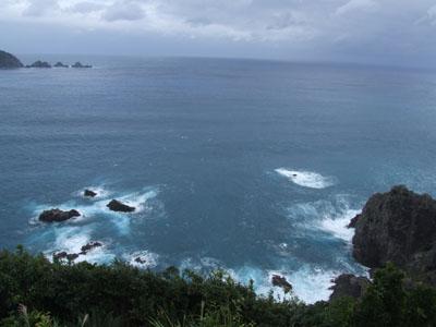 台風、無事通過!_e0028387_19524522.jpg