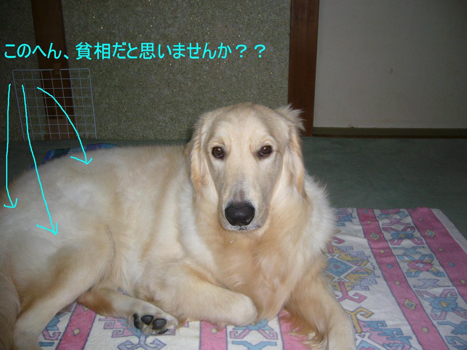 b0206300_10532917.jpg