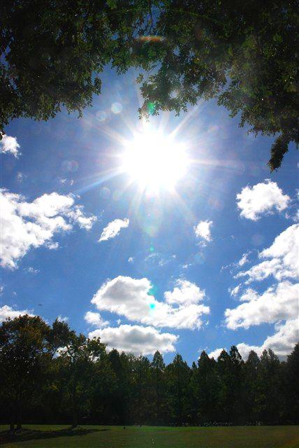 吹きすさぶ秋の冷たい風と、温かく柔らかく包み込む陽射しの中で。_c0116714_10182864.jpg