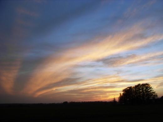 2010年10月30日(土):夕焼け空はなかなか頑張った_e0062415_164295.jpg