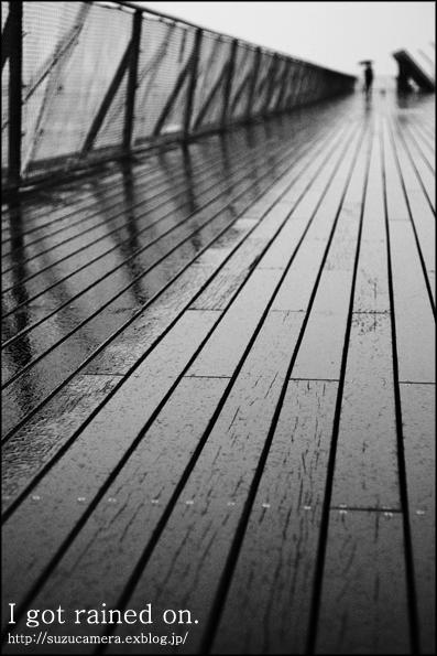 雨に降られた日_f0100215_1252573.jpg