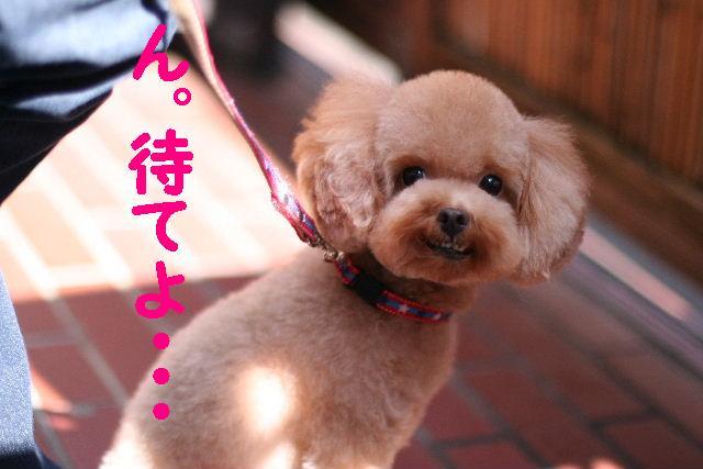 台風はいまどこじゃぁ~~~~!!??_b0130018_17562847.jpg