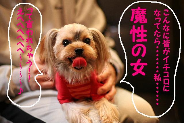 台風はいまどこじゃぁ~~~~!!??_b0130018_17574150.jpg