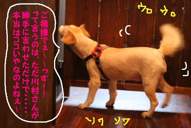 台風はいまどこじゃぁ~~~~!!??_b0130018_1801497.jpg