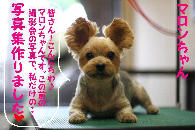台風はいまどこじゃぁ~~~~!!??_b0130018_1813934.jpg