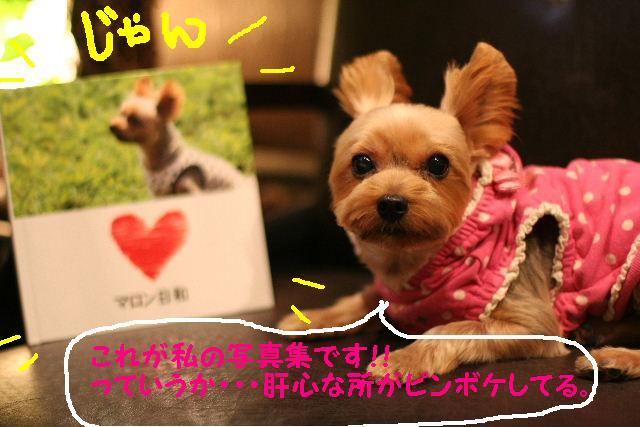 台風はいまどこじゃぁ~~~~!!??_b0130018_182514.jpg