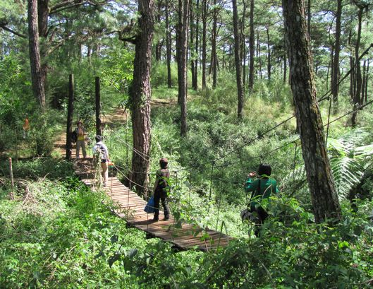 身近にあるハイキング・コース Eco Trail in Camp John Hay_a0109542_20165665.jpg