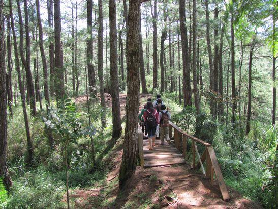 身近にあるハイキング・コース Eco Trail in Camp John Hay_a0109542_20192518.jpg