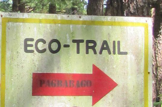 身近にあるハイキング・コース Eco Trail in Camp John Hay_a0109542_2074760.jpg