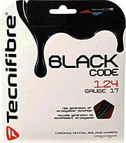黒のポリガットが流行り_a0151444_10515228.jpg