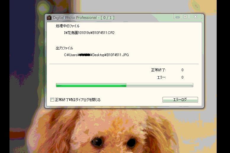 c0152553_19565482.jpg