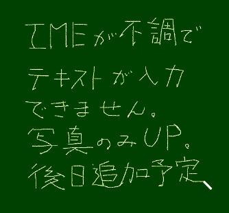 b0029488_343691.jpg