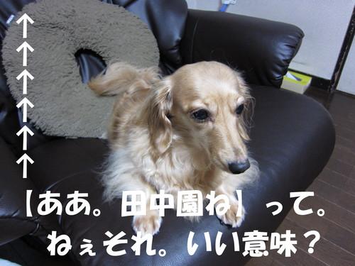 b0200291_14144829.jpg