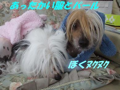 f0179203_9285721.jpg